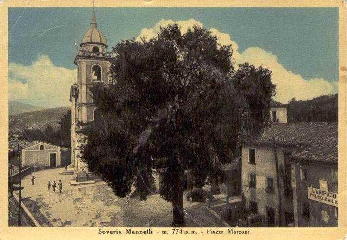 L'olmo di Soveria Mannelli intorno al 1950
