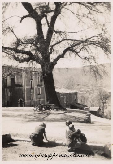 Olmo anni '50